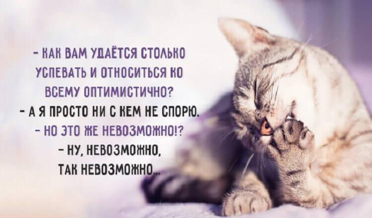 """Цитаты из серии """"Жизнь коротка"""""""