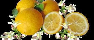 Вреден ли лимон? 2
