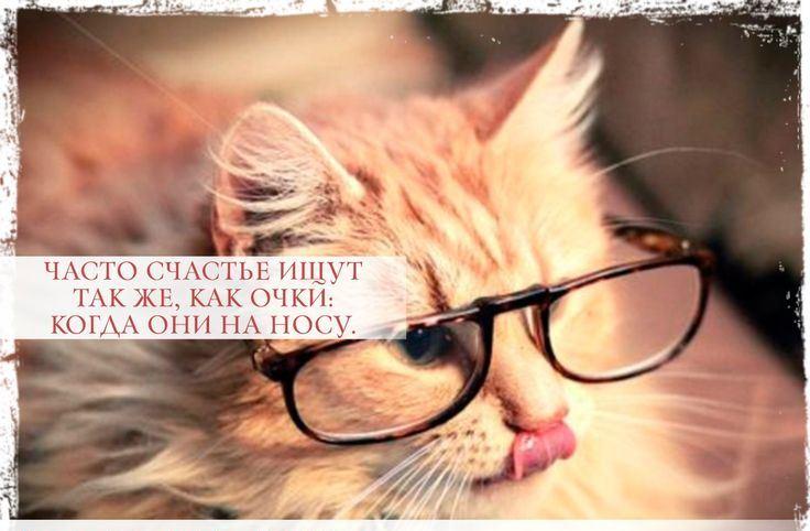 Цитаты про очки