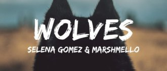 Перевод песни и клип Selena Gomez feat. Marshmello — Wolves 17