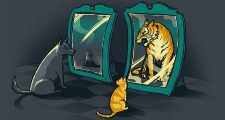 Цитаты про самооценку