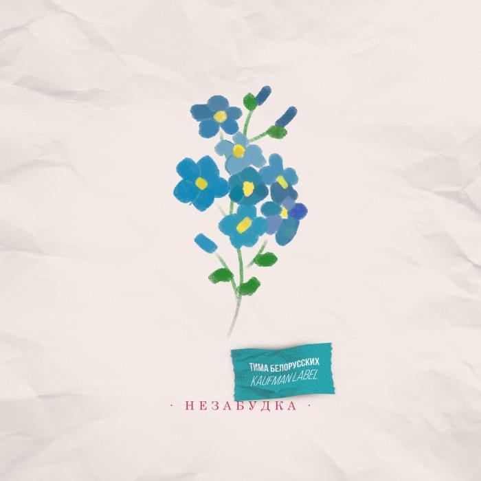Текст песни Тима Белорусских - Незабудка 1