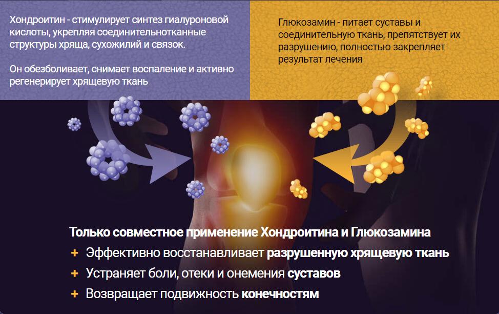 Пантофлекс действие препарата