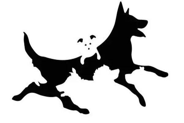 Тест на определение возраста вашего разума: сколько собак вы видите на картинке?